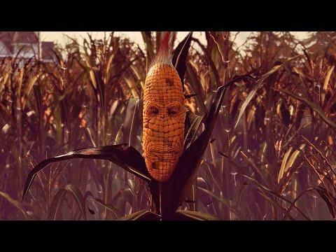 Maize — Думай, как кукуруза, стань кукурузой!