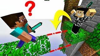LE MEILLEUR PIÈGE IMPOSSIBLE À VOIR !   Minecraft Skywars