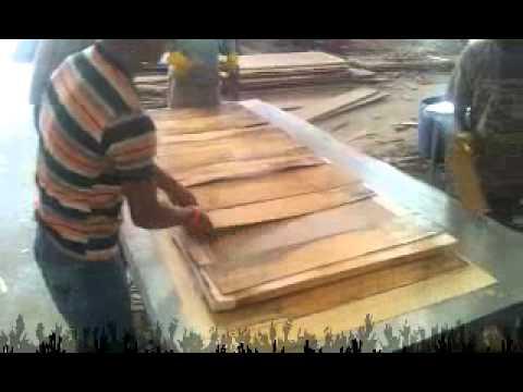 Flushdoor Manufacturing Meeraind By Gopalbhai