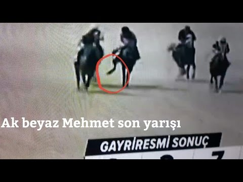 Atın Yarış Sırasında Ayağı kırıldı | Beyaz Mehmet Ayağı kırılma koşusu