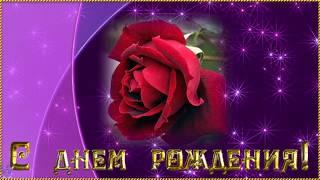 Поздравление с Днем рождения Светлане ◆ Красивая видео открытка