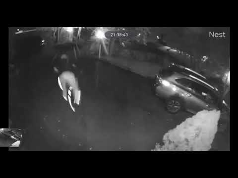 Video: Police Seek Suspect Who Stole Bicycle From New Canaan Residence