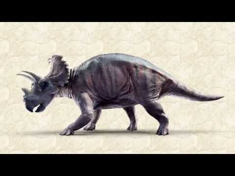 Meet Wendiceratops—the newest dinosaur discovered in Alberta