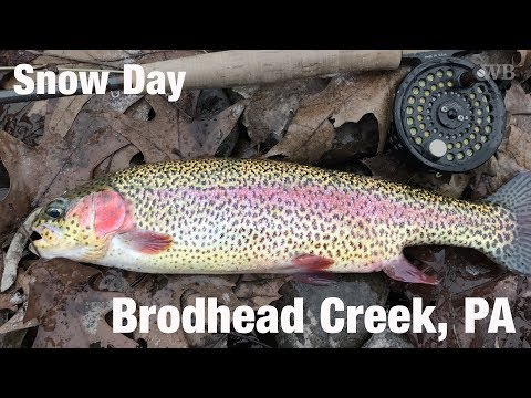 WB - Fly Fishing Snow Day, Brodhead Creek, PA - December '17