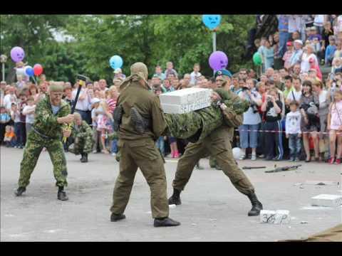 Показательное выступление ВДВ г.Воронеж 9 мая 2012 г.