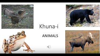 Khuna-i