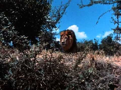 Tarzan  1966 TV Series Full  and  Title Theme a.k.a.