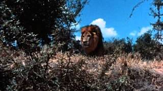 "Tarzan  (1966 TV Series) Full Intro and Opening Title Theme (a.k.a. ""Tarzan's March"")"