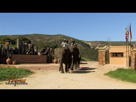 Botlierskop Private Game Reserve Mossel Bay Garden Route South Africa - Africa Travel Channel