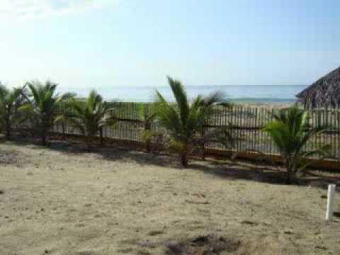 Playa tortuga marquelia guerrero mexico mx for Villas tortuga celestino sinaloa
