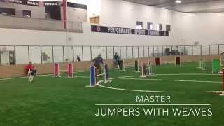 Lancelot Agility 3-20-2015 Master's Jumpers With Weaves