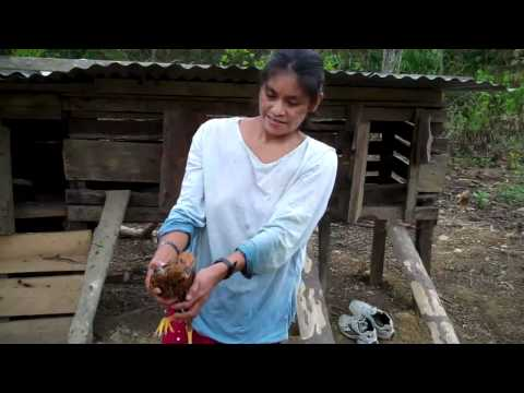 Lives changed in the native village of Huacaria, Peru