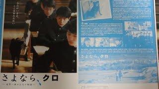 さよなら、クロ 2003 映画チラシ 2003年7月5日公開 【映画鑑賞&グッズ...