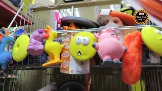 """Игрушки для собаки, команда  """"Подай!""""  Магазин  """"Рыжий кот""""  в Оренбурге."""