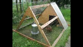 Ideas For Simple Chicken Coops | Designs & Plans For Cheap Simple Chicken Coops |download Blueprints