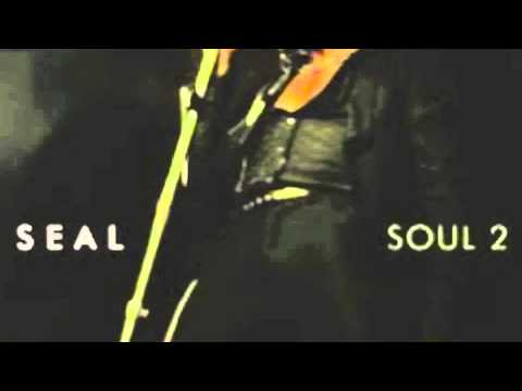 seal-wishing on a star