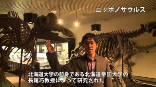 北大生が案内する古生物標本