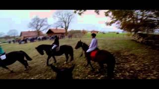 Hubertus w Bałdach - 2015/ fast galloping / szybki galop
