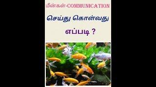 Fish Communication Science