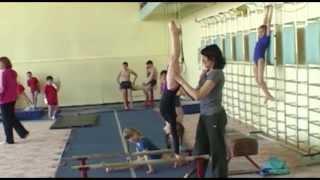 Воткинская ДЮСШ получила новое оборудования для спортивной гимнастики