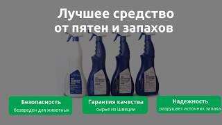 Queen Clean средство против пятен, запахов и меток животных