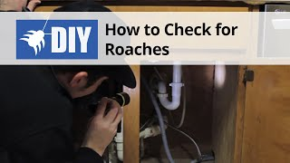 Cockroach Inspection - Learn Where Roaches Hide
