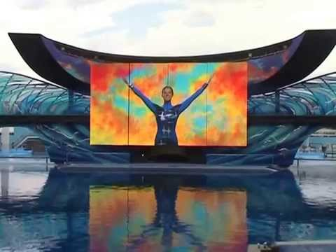 One Ocean Show - One Song Segment - SeaWorld Orlando - 01/08/2011