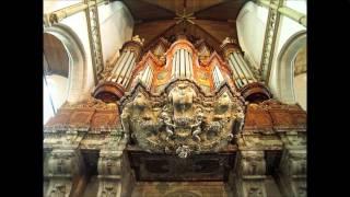 Jan Pieterszoon Sweelinck (1562 - 1621):  Praeludium in F pedaliter - Walter  Gatti, organ