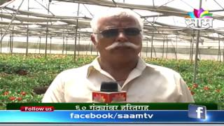 Prashant Desai's flower farm success story