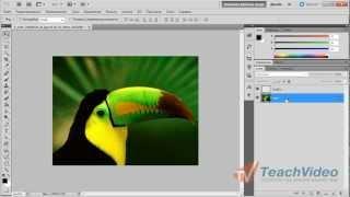 Как создать новый слой в Photoshop?