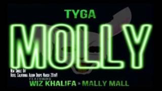 Tyga Ft Wiz Khalifa & Mally Mall - Molly (Hotel California)