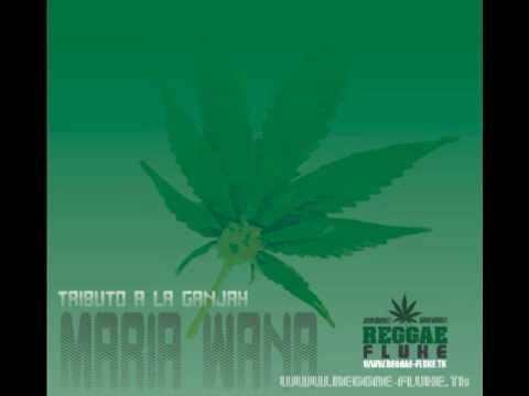Resultado de imagen de Alpha Blondy - Marijuana