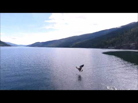 Touring Christina Lake from a drone!