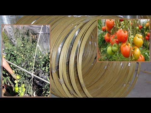 видео: (Часть 1)Парник из стеклопластиковой арматуры для помидор