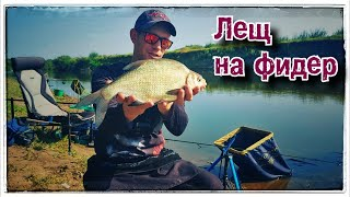 Рыба дуреет Рыбалка на Фидер Река Тобол