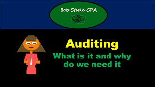 Auditing-What is an audit & why do we need audits