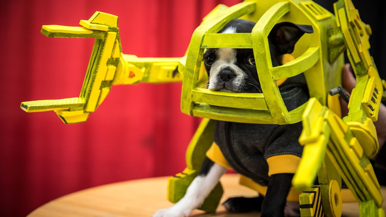 Making An Aliens Power Loader Suit For Ripley The Puppy