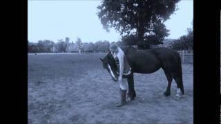 patience my horse xxx