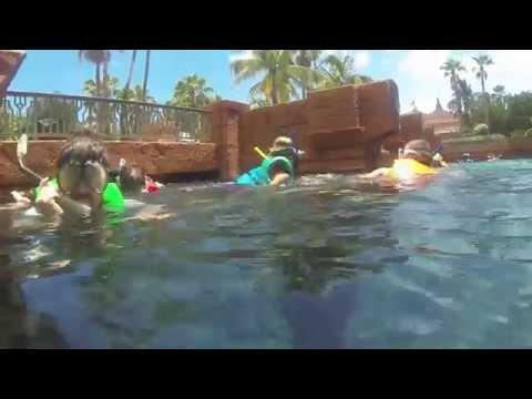 Snorkel the Ruins of Atlantis Bahamas