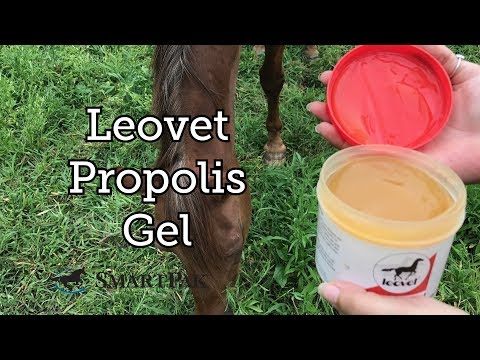 Propolis Gel by Leovet Review