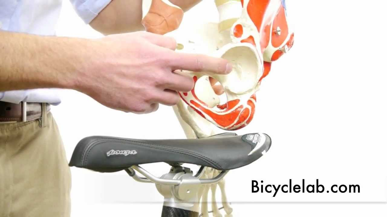 Bicycle Saddle First Video In Series About Seat Comfort For