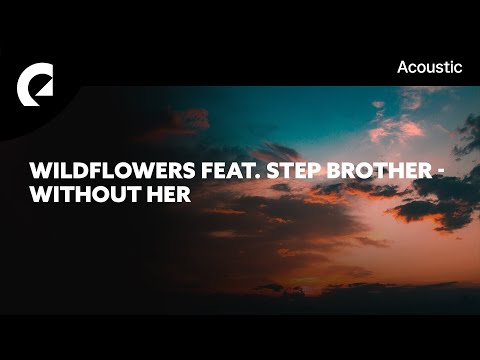 Wildflowers Feat. Step Brother - Without Her