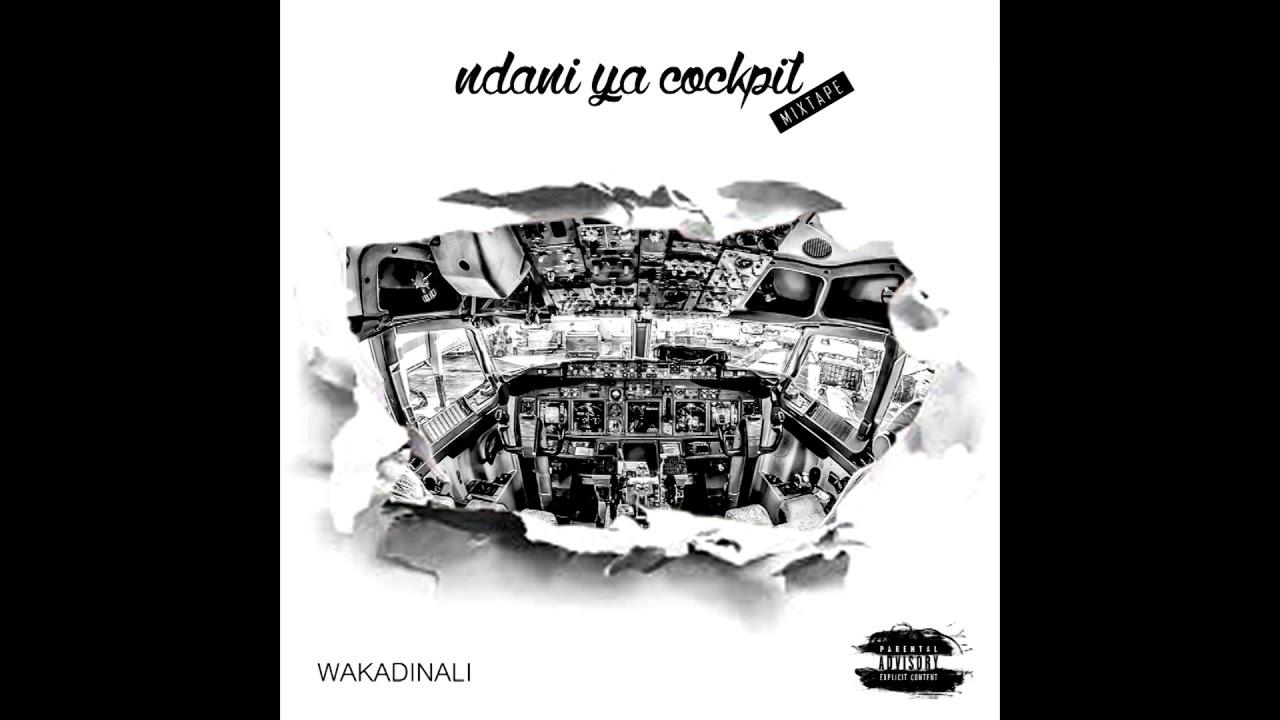 "Download Wakadinali - ""Ujinga Ujinga"" (Official Audio)"