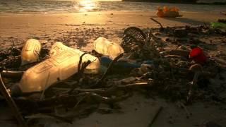Загрязнение пластиком - Угроза природе и человечеству.