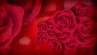 Baixar Jorge e Mateus - Flor - [DVD Ao Vivo em Jurerê] - (Áudio Oficial)