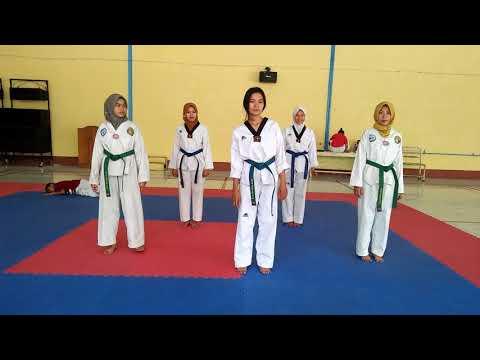 Baby shark  taekwondo
