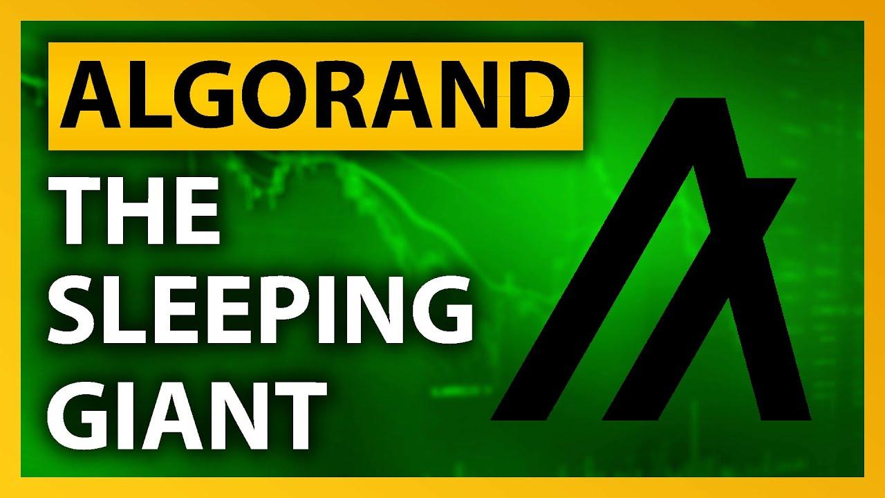 Download Algorand: THE Sleeping Giant Of 2022! | ALGO Explained (CRYPTO)