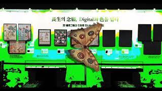 서울약령시 한의학 박물관 전시 전경 AR
