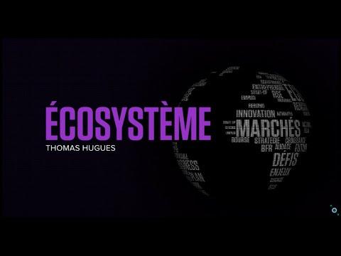 Geotrend x BSmart - Ecosystèmes
