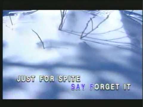 I hate myself for loving you- Joan Jett & The...